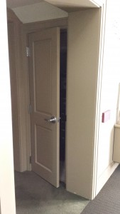 Monster Closet Door